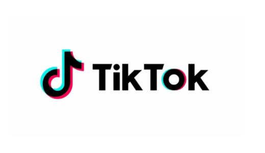 TikTokのマネタイズの仕組み