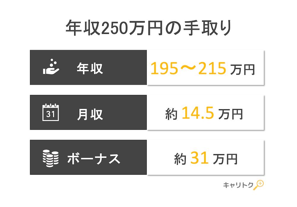 年収250万円の手取り額と生活レベル
